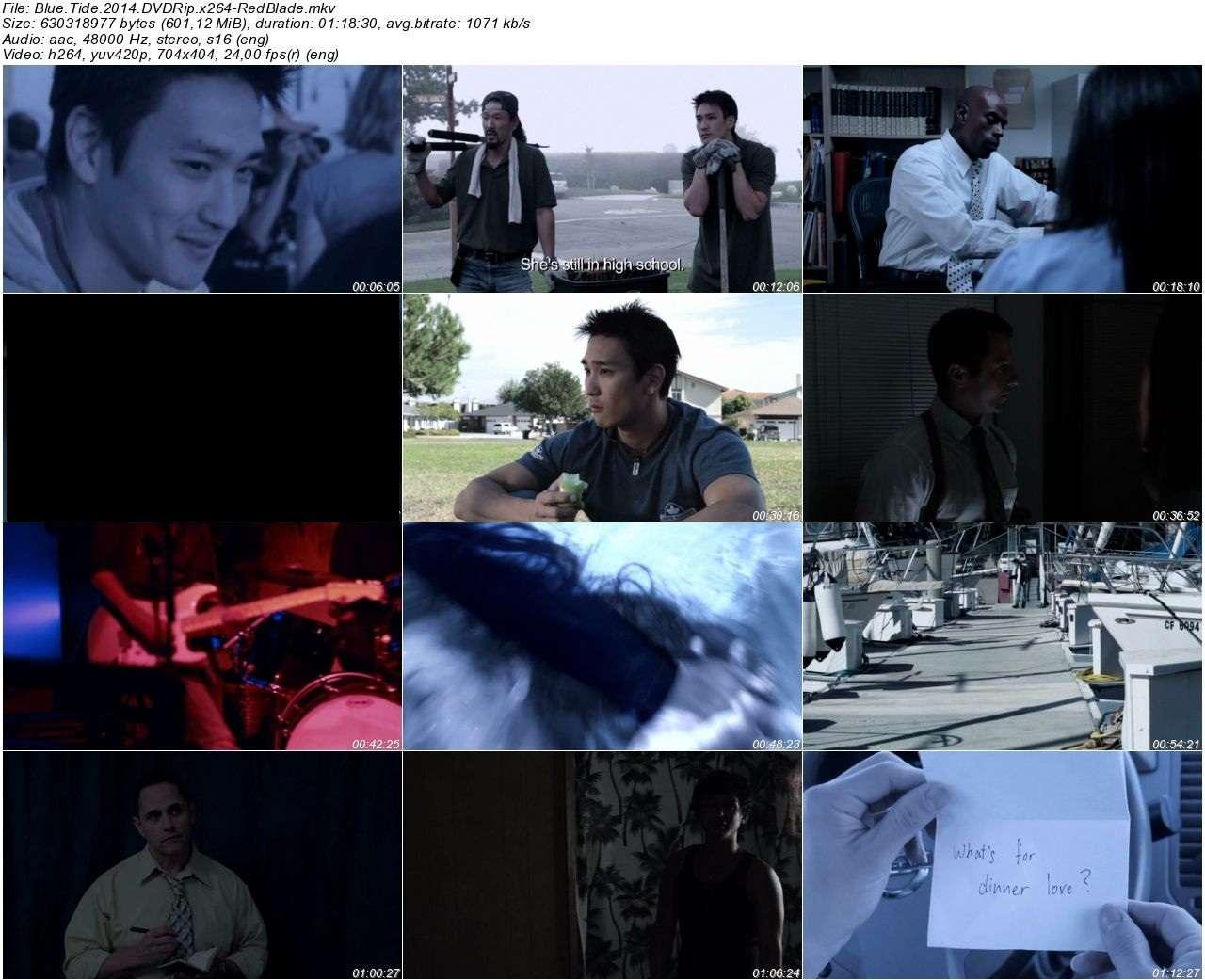 Blue Tide - 2014 DVDRip x264 - Türkçe Altyazılı Tek Link indir