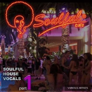 VA - Soulful House Vocals, Pt. 1 - 2015 Mp3 indir