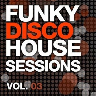 VA - Funky Disco House Essentials Vol 3 - 2014 Mp3 indir