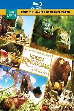 BBC Gizli Krallık - BBC Earth Hidden Kingdoms - 2014 BluRay 1080p Türkçe Dublaj MKV indir