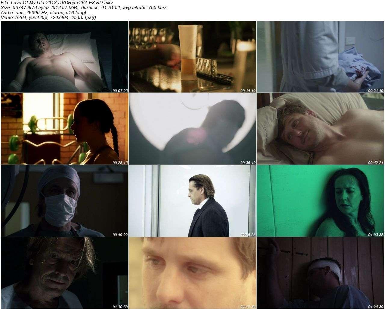 Love Of My Life - 2013 DVDRip x264 - Türkçe Altyazılı Tek Link indir