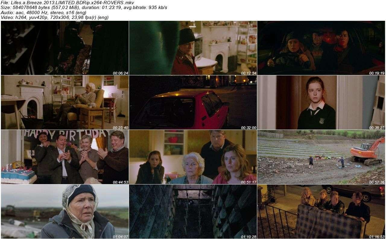 Lifes a Breeze - 2013 DVDRip x264 AC3 - Türkçe Altyazılı Tek Link indir