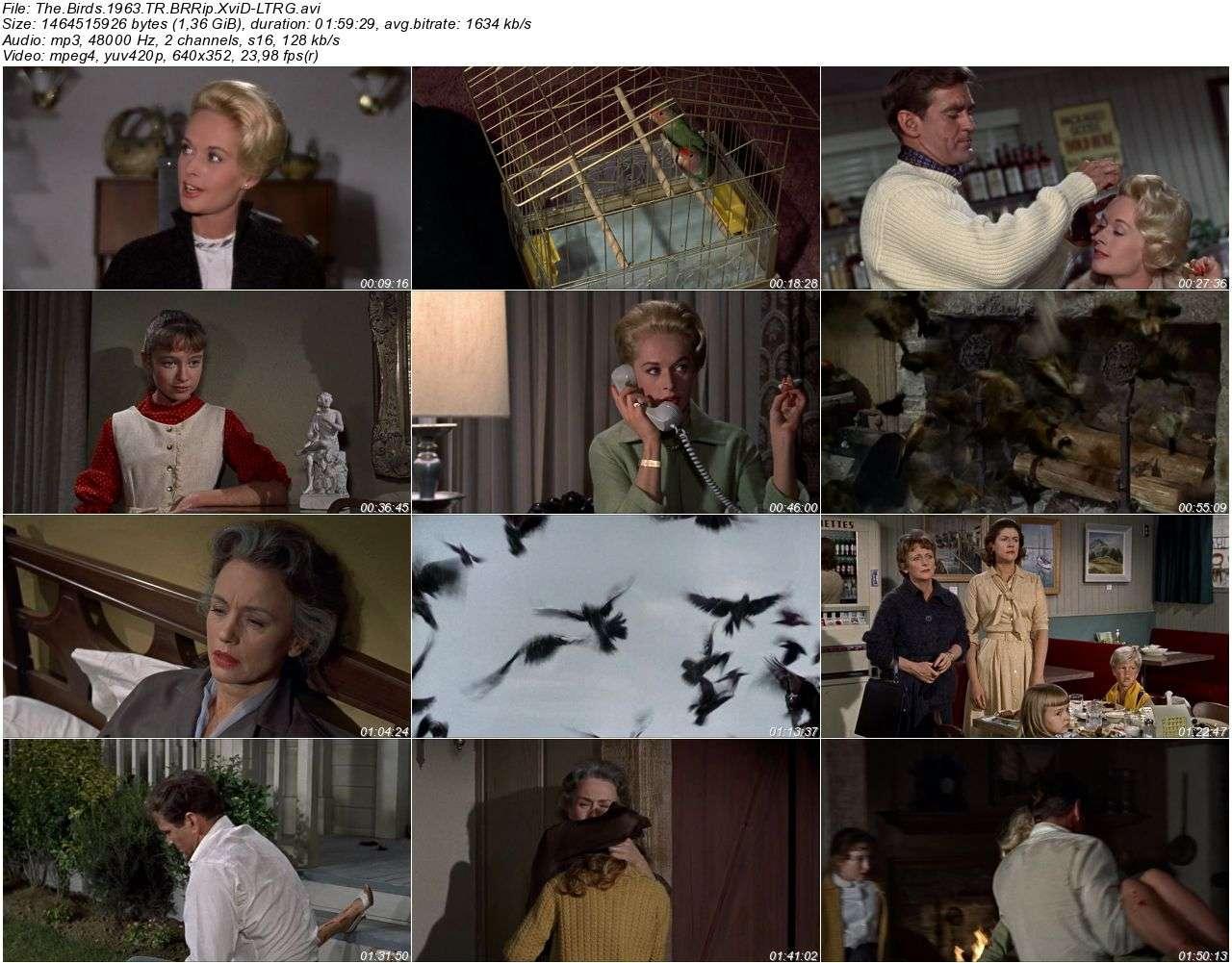 Kuşlar - 1963 BRRip XviD - Türkçe Dublaj Tek Link indir