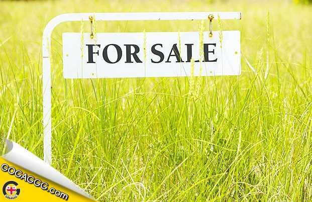 სასწრაფოდ იყიდება კერძო სახლი ქ. მარნეულში