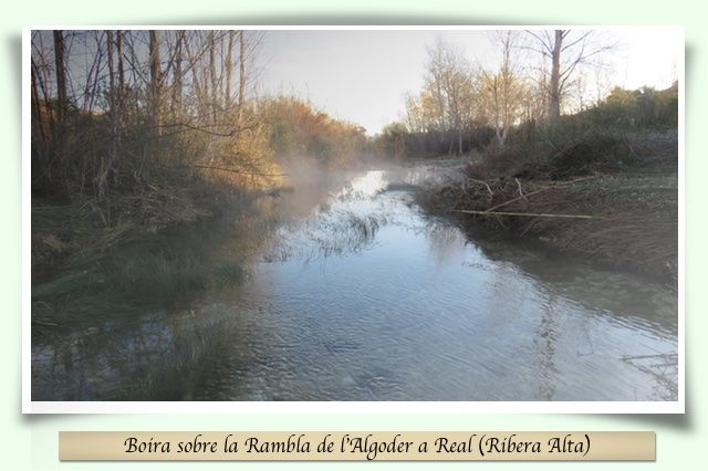 Boira sobre un riu