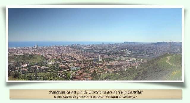 Panoràmica des de Puig Castellar