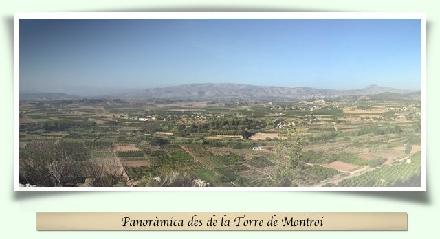 Vistes des de la torre de Montroi
