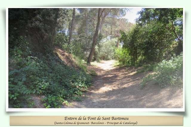 Camí de la Font de Sant Bartomeu