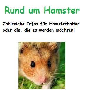 Rund um Hamster