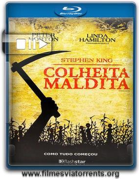 Colheita Maldita Torrent – BluRay Rip 720p Dublado