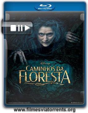 Caminhos da Floresta Torrent - BluRay Rip 720p   1080p Dublado 5.1