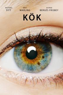 Kök - 2014 BDRip XviD - Türkçe Dublaj Tek Link indir