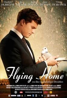 Flying Home - 2014 DVDRip x264 AC3 - Türkçe Altyazılı Tek Link indir