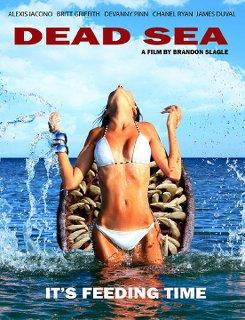 Dead Sea - 2014 BDRip x264 - Türkçe Altyazılı Tek Link indir