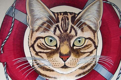 8 destinos perfectos para cualquier amante de los gatos