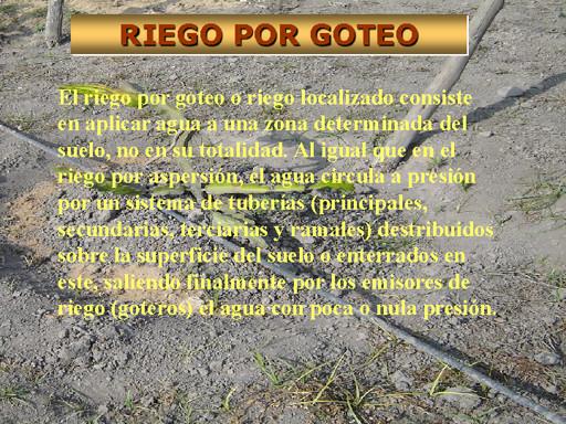 Caracter sticas del riego por goteo jardiner a - Riego gota a gota ...