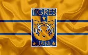 Tigres se tomó la foto oficial del Clausura 2020