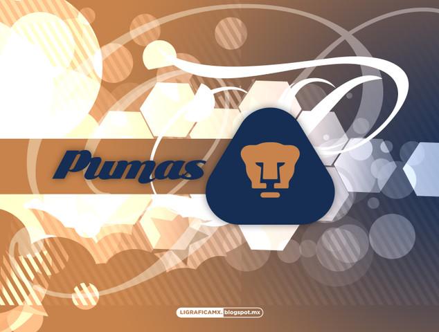 Fichajes, Bajas y Rumores de Pumas, Pumas saneo sus finanzas, suena portero colombiano