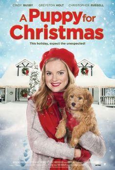 Película Un Cachorro para Navidad por TV – Sábado 24 de Diciembre del 2016