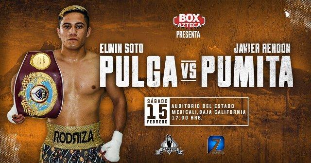 Elwin Soto vs Javier Rendón en Vivo – Box – Sábado 15 de Febrero del 2020