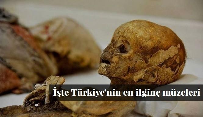 Türkiye'nin En İlginç Müzeleri | Doğa, Havacılık Otomobil Gibi Tek Konuya İlişkin Ürünle..