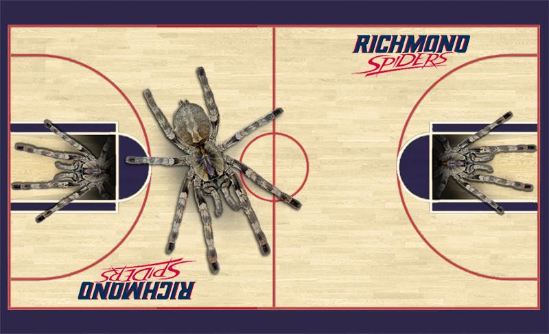 Gofrogs design tcus basketball court killerfrogs img pronofoot35fo Choice Image