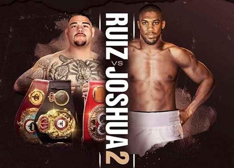 Previa Andy Ruiz Jr vs Anthony Joshua 2 en Vivo – Sábado 7 de Diciembre del 2019
