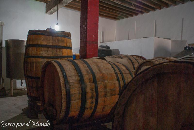 Tradición en preparación vinícola en Vinos Vitali