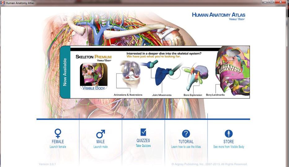 Excelente Visible Body 3d Human Anatomy Atlas Foto - Imágenes de ...