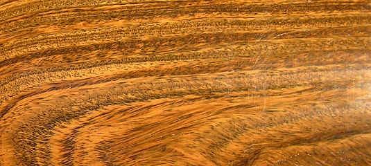 beno t de bretagne luthier pas de calais afficher le. Black Bedroom Furniture Sets. Home Design Ideas